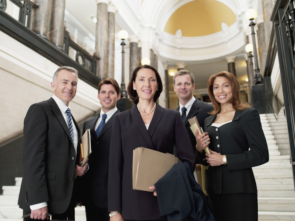 Litigation Team